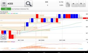 Review saham ACES